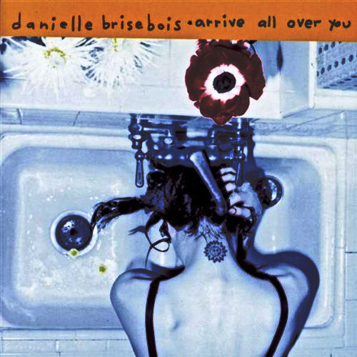 Danielle Brisbois Arrive All Over You